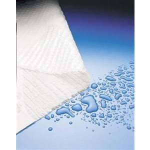 Graham Plasbak Tissue / Polyback Towels (500 / box)